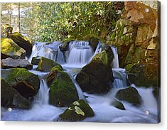 Cherry Run Cascades #1 - Bald Eagle State Forest Acrylic Print