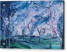 Cherry Trees Impressionism Acrylic Print by Eric  Schiabor