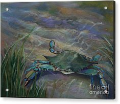 Chesapeake Bay Blue Crab Acrylic Print