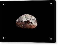 Cheshire Toad Acrylic Print