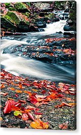 Chesterfield Gorge New Hampshire Acrylic Print