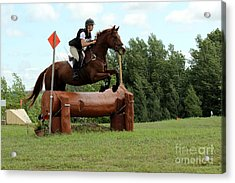 Chestnut Over Log Jump Acrylic Print