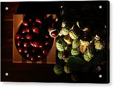 Acrylic Print featuring the photograph Chestnuts by David Andersen