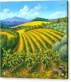 Chianti Feeling 30 X 30 Acrylic Print by Michael Swanson