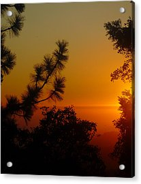 Acrylic Print featuring the photograph Chiaronaturo Iv by Ursel Hamm and Kristen R Kennedy