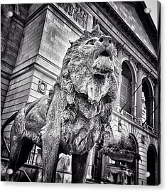 Lion Statue At Art Institute Of Chicago Acrylic Print by Paul Velgos
