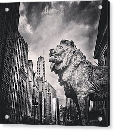 Art Institute Of Chicago Lion Picture Acrylic Print by Paul Velgos