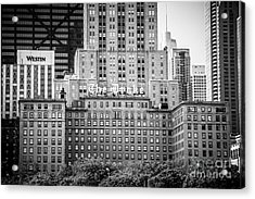 Chicago Drake Hotel In Black And White Acrylic Print by Paul Velgos