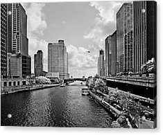 Chicago River - The River That Flows Backwards Acrylic Print