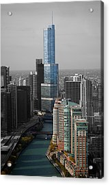 Chicago Trump Tower Blue Selective Coloring Acrylic Print by Thomas Woolworth