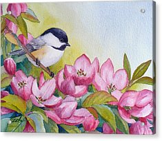 Chickadee And Crabapple Flowers Acrylic Print