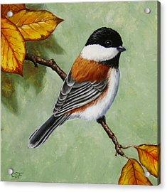 Chickadee - Autumn Charm Acrylic Print
