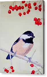Acrylic Print featuring the painting Chickadee by Laurel Best