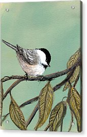 Chickadee Set 10 - Bird 1 Acrylic Print