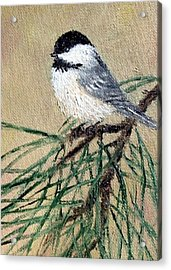 Chickadee Set 17 Bird 2 Detail Print Acrylic Print