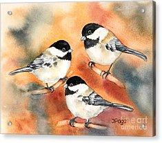 Chickadees Trio Acrylic Print by Inese Poga