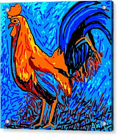 Chicken-5 Acrylic Print by Anand Swaroop Manchiraju