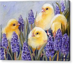 Chicks Among The Hyacinth Acrylic Print
