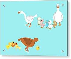Chicks And Ducks Acrylic Print