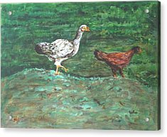 Chicks Acrylic Print by Usha Shantharam