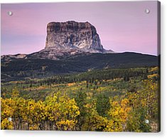 Chief Mountain Sunrise Acrylic Print by Mark Kiver