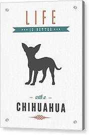 Chihuahua 01 Acrylic Print