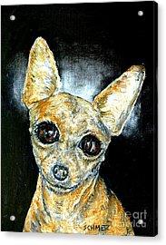 Chihuahua Angel Acrylic Print by Jay  Schmetz