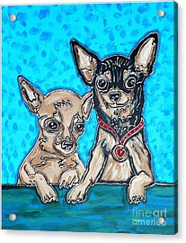 Chihuahua Duo Acrylic Print