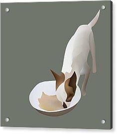 Chihuahua Eating Acrylic Print by Suphatthra China