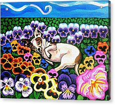 Chihuahua In Flowers Acrylic Print by Genevieve Esson