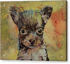Chihuahua Acrylic Print by Michael Creese
