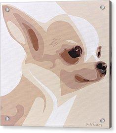 Chihuahua Acrylic Print by Slade Roberts