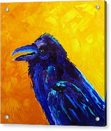 Chihuahuan Raven Acrylic Print by Susan Woodward