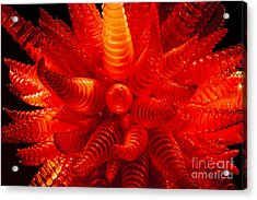 Chihuly Glass 2 Acrylic Print