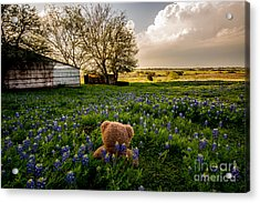 Chilling With The Bonnets Acrylic Print