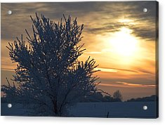 Acrylic Print featuring the photograph Chilly Sunrise by Dacia Doroff