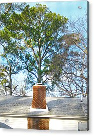 Chimney Tree Acrylic Print