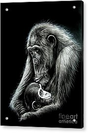 Chimp Love Acrylic Print by Anastasis  Anastasi