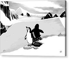 Chin Strap Penguins Acrylic Print