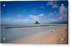 Chinaman's Hat Mokolii In Hawaii Acrylic Print