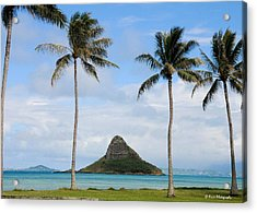 Chinaman's Hat - Oahu Hawai'i Acrylic Print