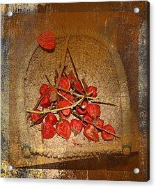 Chinese Lantern Seed Pods Acrylic Print by Kume Bryant