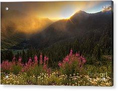 Chinook Pass Sunrise II Acrylic Print by Mark Kiver