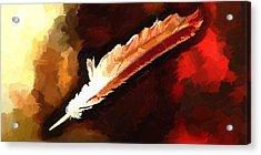 Chippewa Dreams Acrylic Print by Daniel Mowry