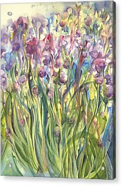 Chives Surprise Acrylic Print by Lynne Bolwell