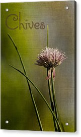 Chives Acrylic Print by Wayne Meyer