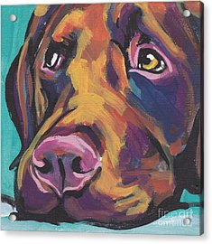 Choco Lab Love Acrylic Print by Lea S