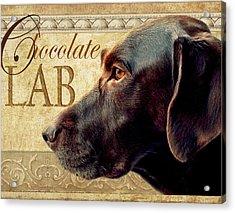 Chocolate Lab Acrylic Print