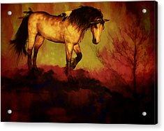 Choctaw Ridge Acrylic Print
