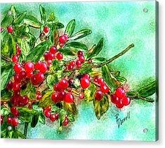 Chokecherry Branch Acrylic Print by Ric Darrell